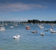 producteur local en golfe du morbihan