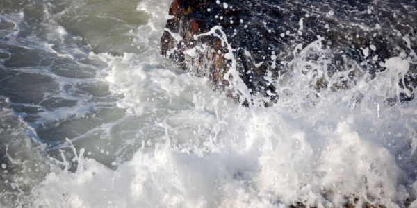 Les vagues s'éclatent sur les rochers et embaument l'air d'une tonique ambiance salée. C'est la Bretagne Sud, tonique et vivifiante, où paissent en pleine liberté les vaches de le ferme de Kerilio.