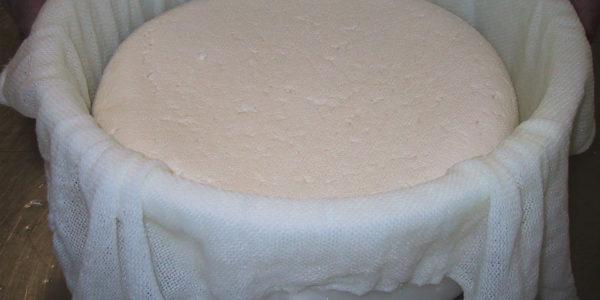 fabrication des fromages en Bretagne
