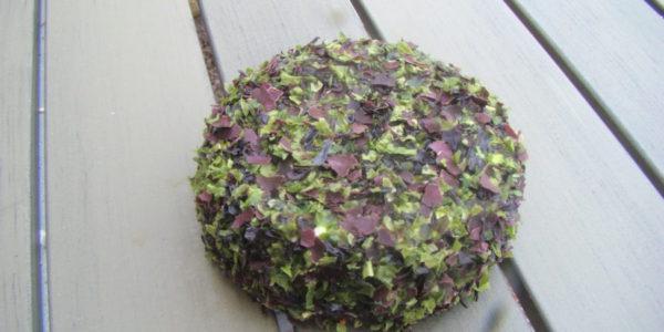 fromage frais aux algues de mer de Roscoff