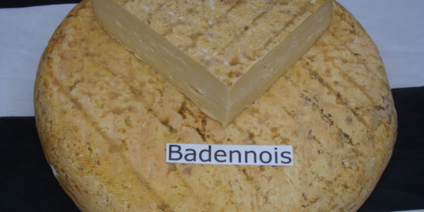 le Badennois fromage breton