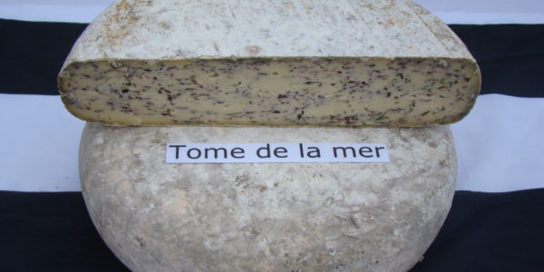 La tome de la mer, fromage breton