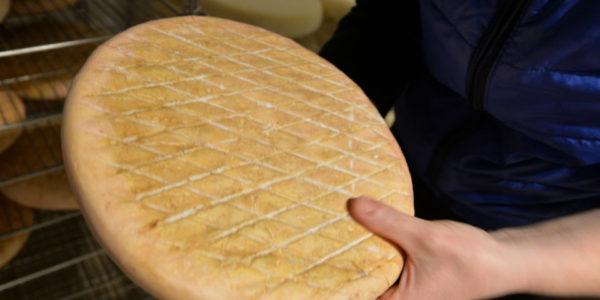 Le grand Badennois typé et onctueux, spécialité des affinés de la fromagerie de Baden.